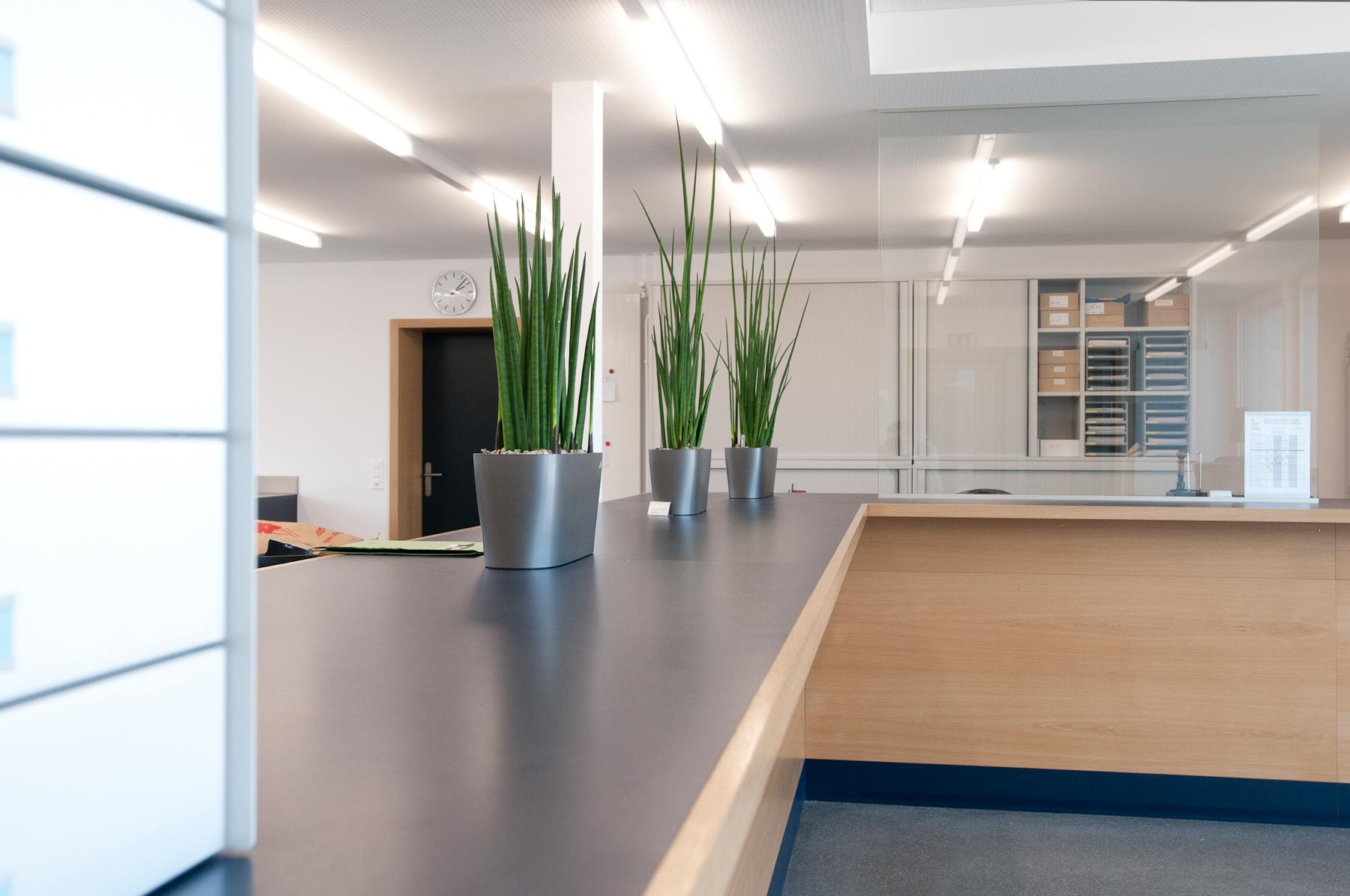 Minergie P Eco Zollgebäude Ramsen, Holzbau (3)