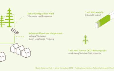 Holz und Nachhaltigkeit